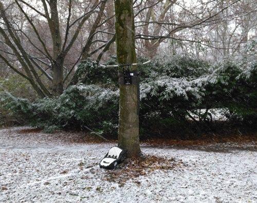 Klimmzugstange am Baum