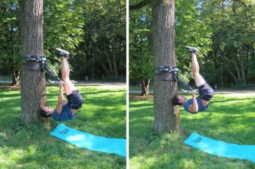 bodyweight rudern