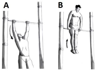 Muscle-ups Ablauf