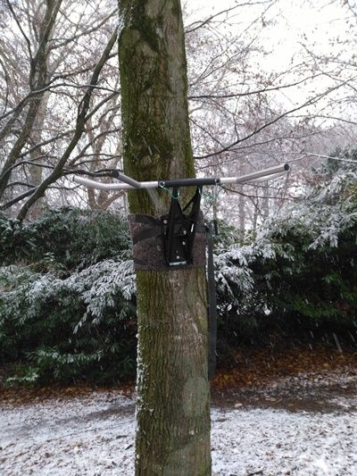 Klimmzugstange Baum